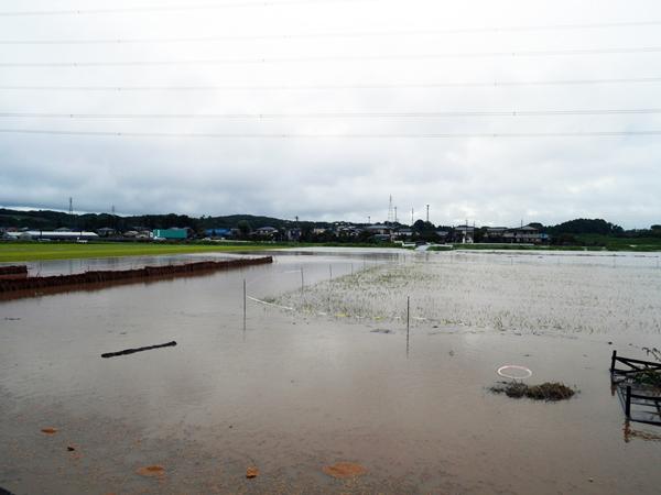 2015年内水氾濫