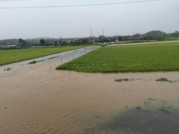 2016内水氾濫1