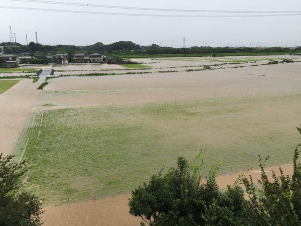 2016内水氾濫2