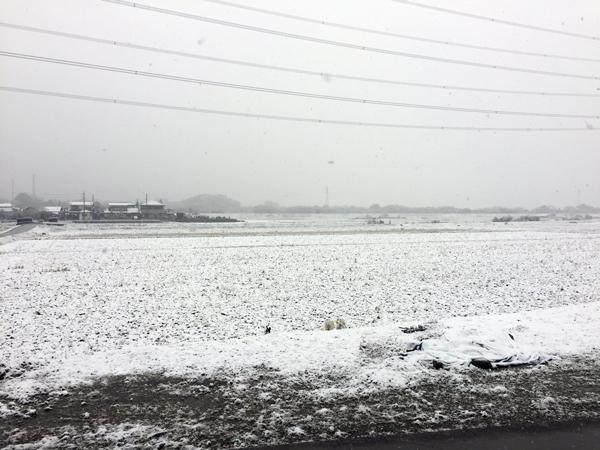 20161124積雪